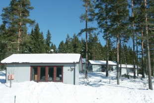 Räven i Isaberg - 4-6...