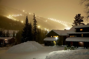 Alpin Apartments Type ...