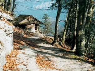 Familie vandreferie