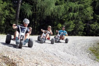 MountainCart i Flachau